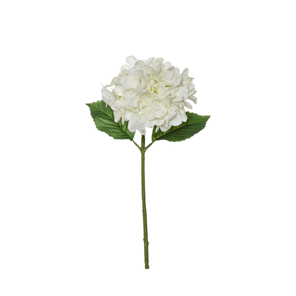 Shop Garden Hydrangea Stem | White at Rose St Trading Co