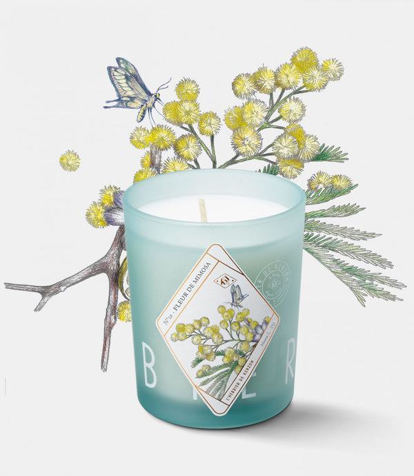 Shop Fleur de Mimosa Candle at Rose St Trading Co