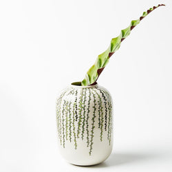 Shop String of Pearls Vase at Rose St Trading Co