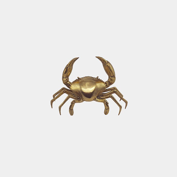 Shop Crab Brass | Small at Rose St Trading Co