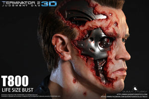 Queen Studios T800 1:1 Scale Lifesize Bust