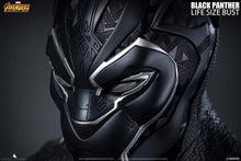 Queen Studios 1:1 Scale Black Panther Lifesize Bust