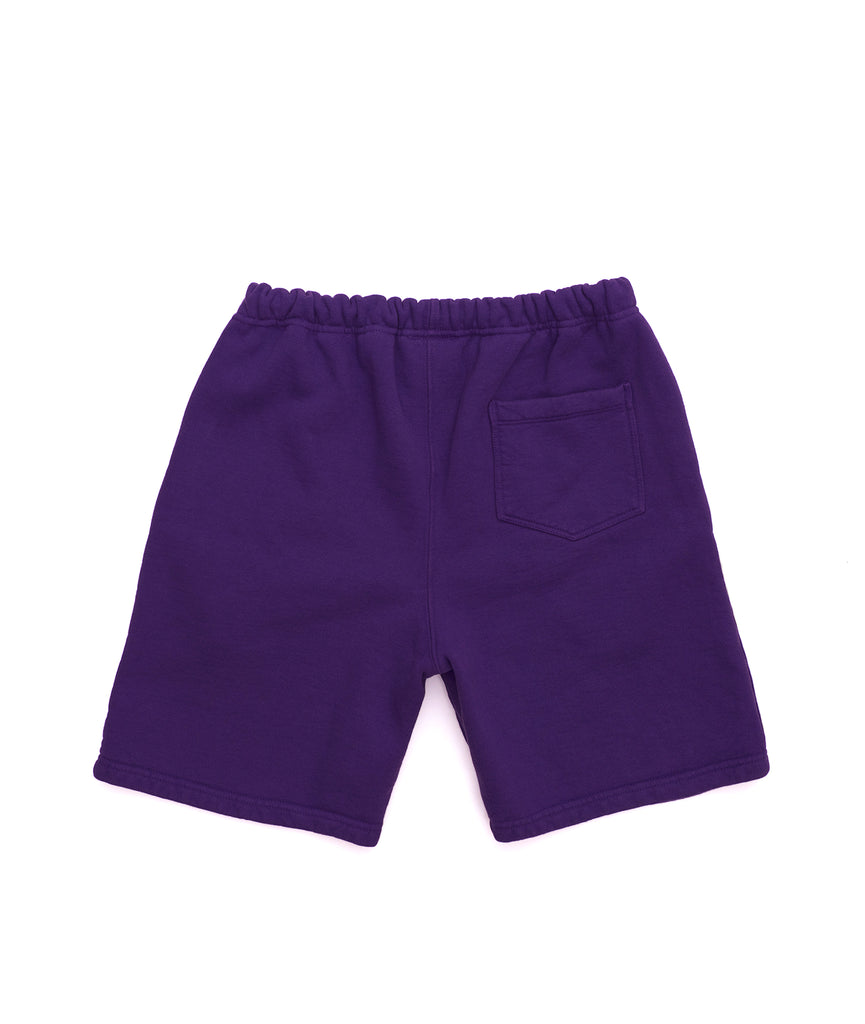 Alife Basics Fleece Short in Purple - Back