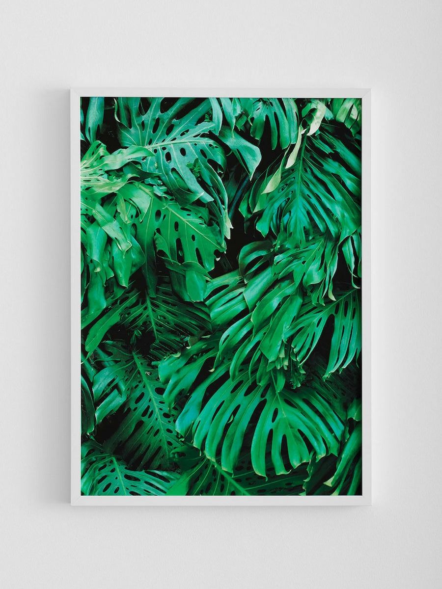 Hunting for George 'Golden Years Collection' – Mr. Fancy Pants Monstera Print