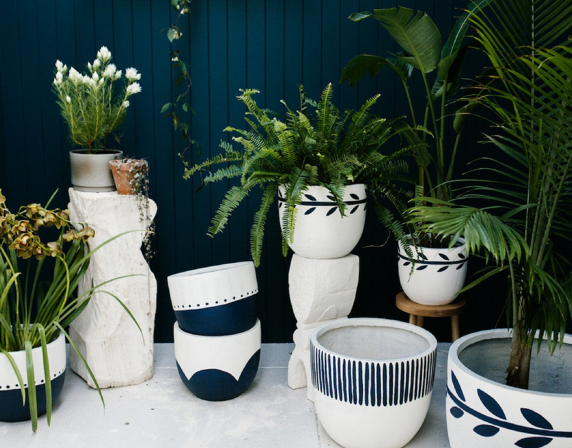 Pop-and-Scott-03-indigo-pots