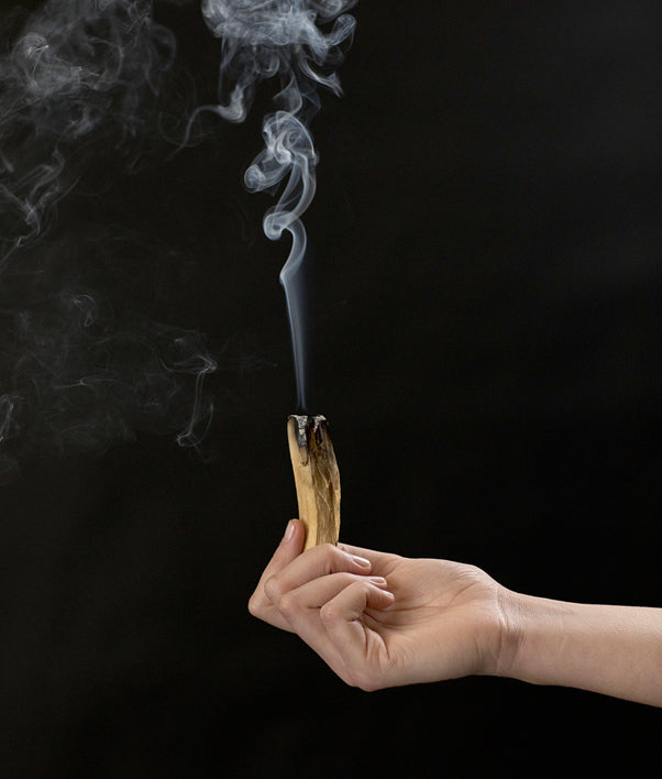 Addition Studio Palo Santo Incense Sticks