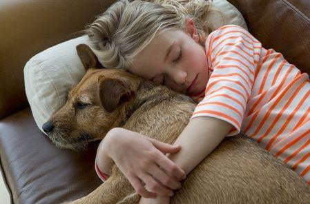 The Benefits Of Pet Ownership-Pup Town Spaw LLC
