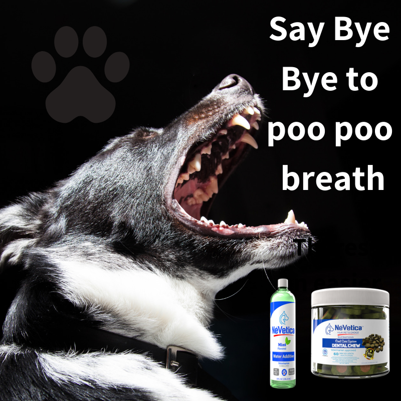 Mouthwash for dogs-Nevetica-Pup Town Spaw LLC