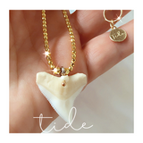 Shark Tooth Protection Necklace