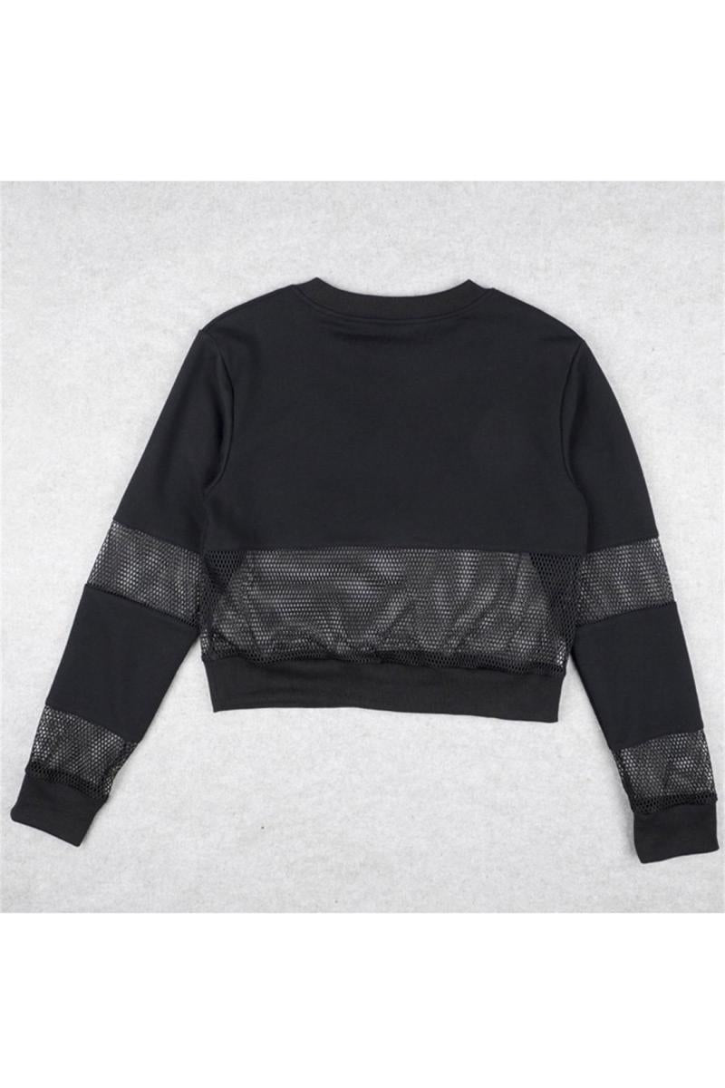 CORIRESHA See Through Mesh Crop Sew Sweatshirt