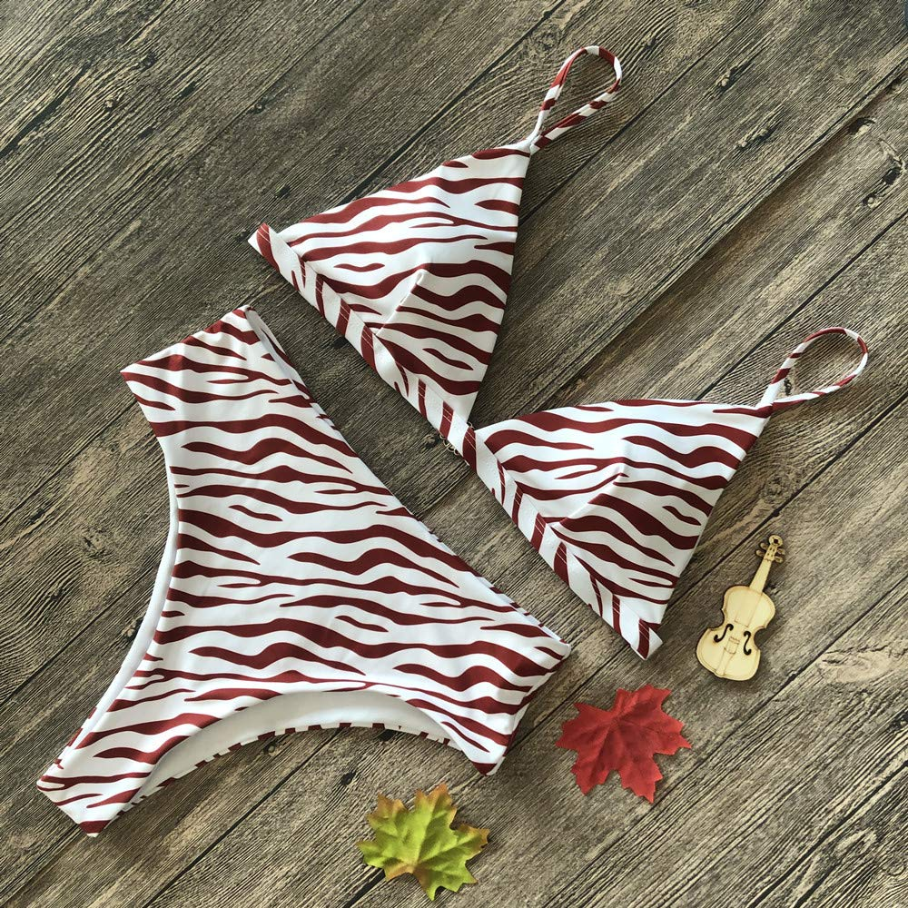 CORIRESHA Red Zebra Print Bikini Set Beach Swimsuit