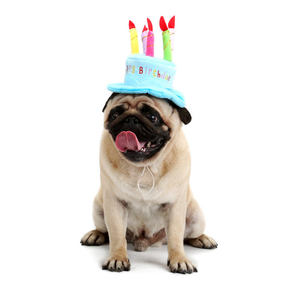 PETPETROL 2018 Birthday Cake Personality Hat Pet  Accessories