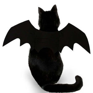 Bat Wings Pet Accessories Party