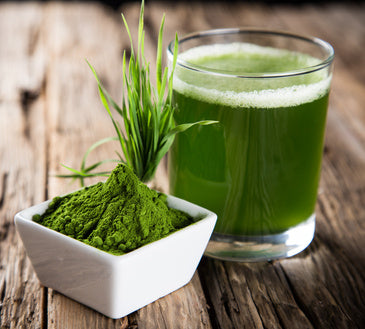 Organic barley grass powder – a super green that's super good for you!