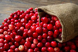 Cranberries – so much more than just a seasonal sweet treat!