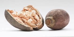 Baobab – boost your nutrient intake with one simple serving! - by The Superfood Blog