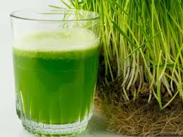 Why the buzz about barley grass? - by The Superfood Blog