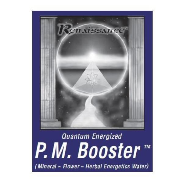 Renaissance PM Booster Alkaline Mineral Water (1000 mL / 34 oz) by Exsula Superfoods