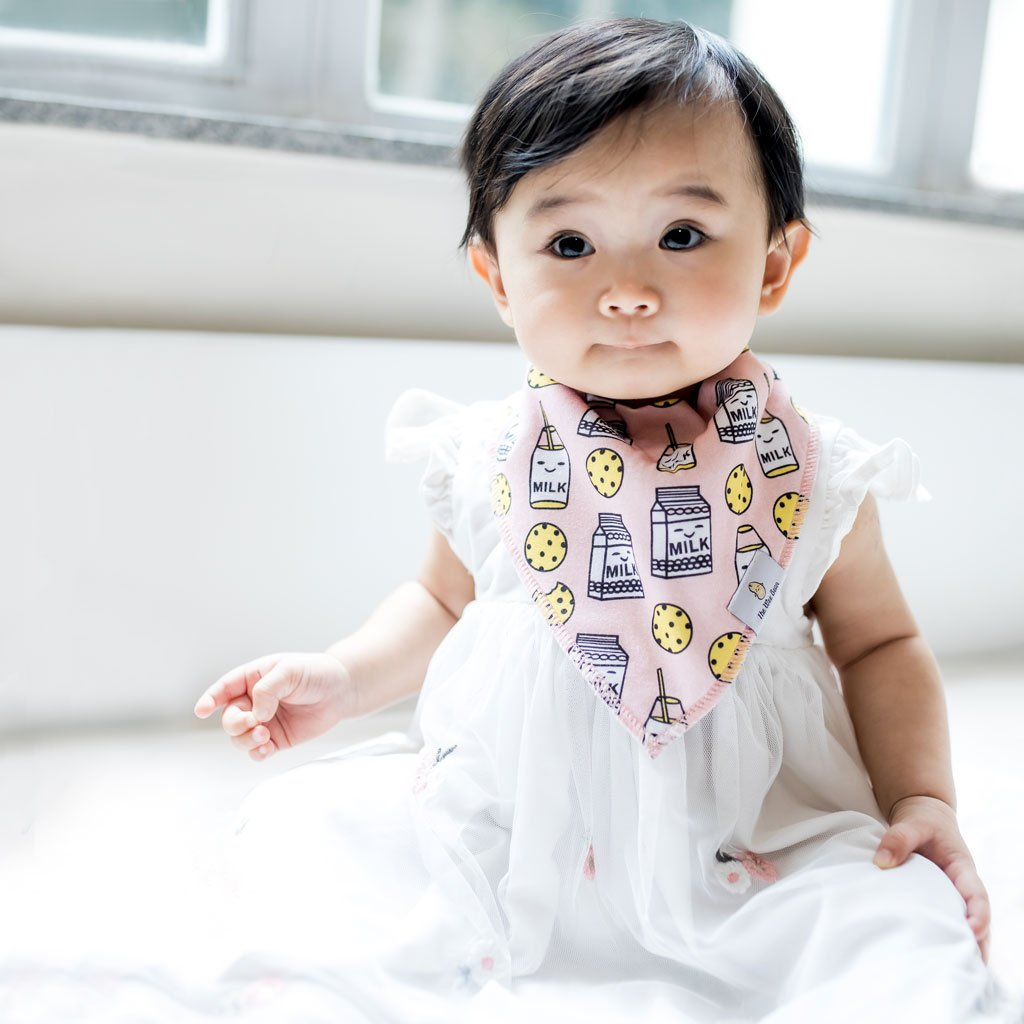 Organic Cotton Bandana Bibs 4pcs Set - Snacks Collection