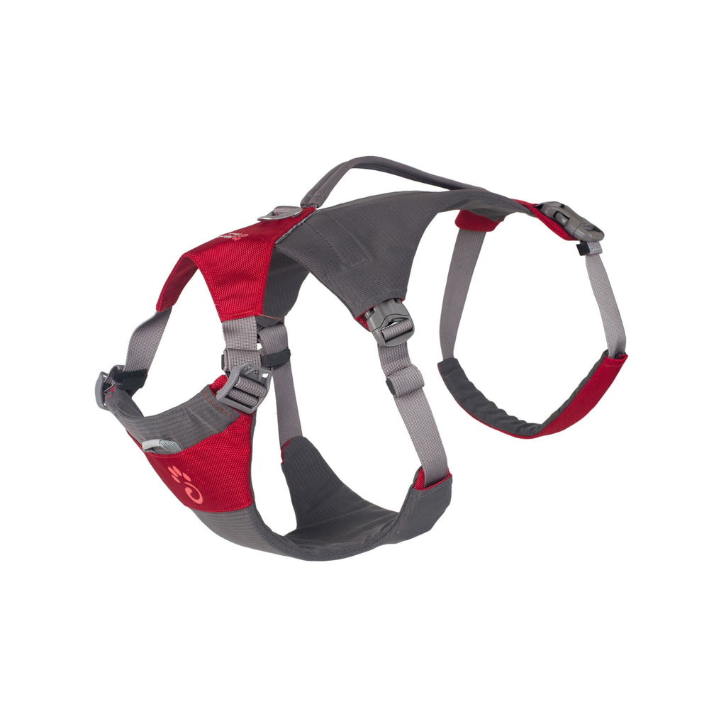 Red Dog Harness - Small - Its A Dogs Life | Clothing & Gifts