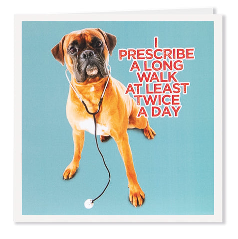 I Prescribe - Its A Dogs Life | Clothing & Gifts
