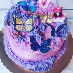 image of butterfly themed cake that will be decorated in the buttercream and butterflies cake decorating class