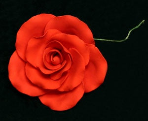 Tea Rose Single w/wire - Red - Extra Large