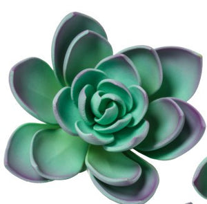 Gumpaste Succulents - Large - Purple/Blue