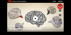 TED Ed and the bilingual brain