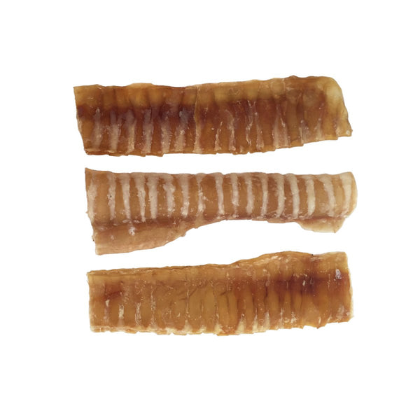 "Trachea Strip Flat 6"" - 40 Pack"