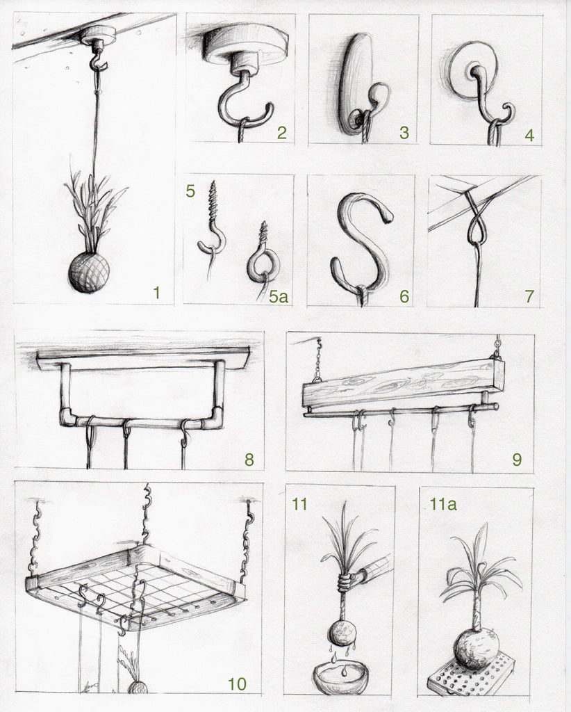 Hanging Plant Installation Design Hook Methods