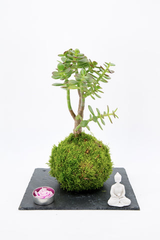 Jade Zen garden on slate tray