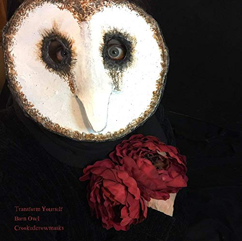 Barn Owl Masquerade Masks - Paper Mache Owl Mask Props - Creepy Scary Adult Halloween Bird and Animal Masks