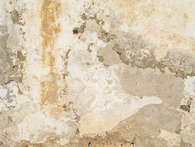 Plaster Wall Effect Wallpaper Mural Beige - Your 4 Walls