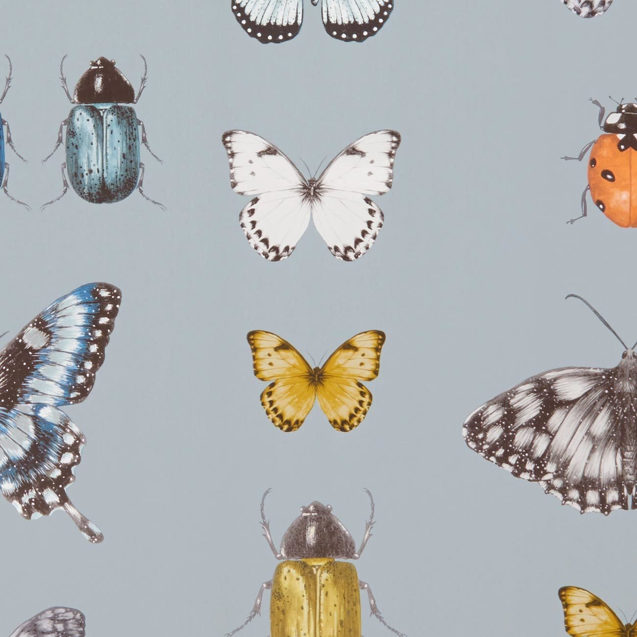 Papilio Traditional Insects & Butterflies  | Designer Motif Wallpaper in Mineral, Gold/Silver & Blue