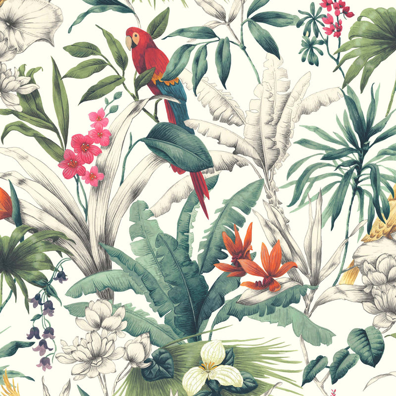 Bird of Paradise Parrot Design Accessorize Wallpaper | Red, Pink & Green - Your 4 Walls