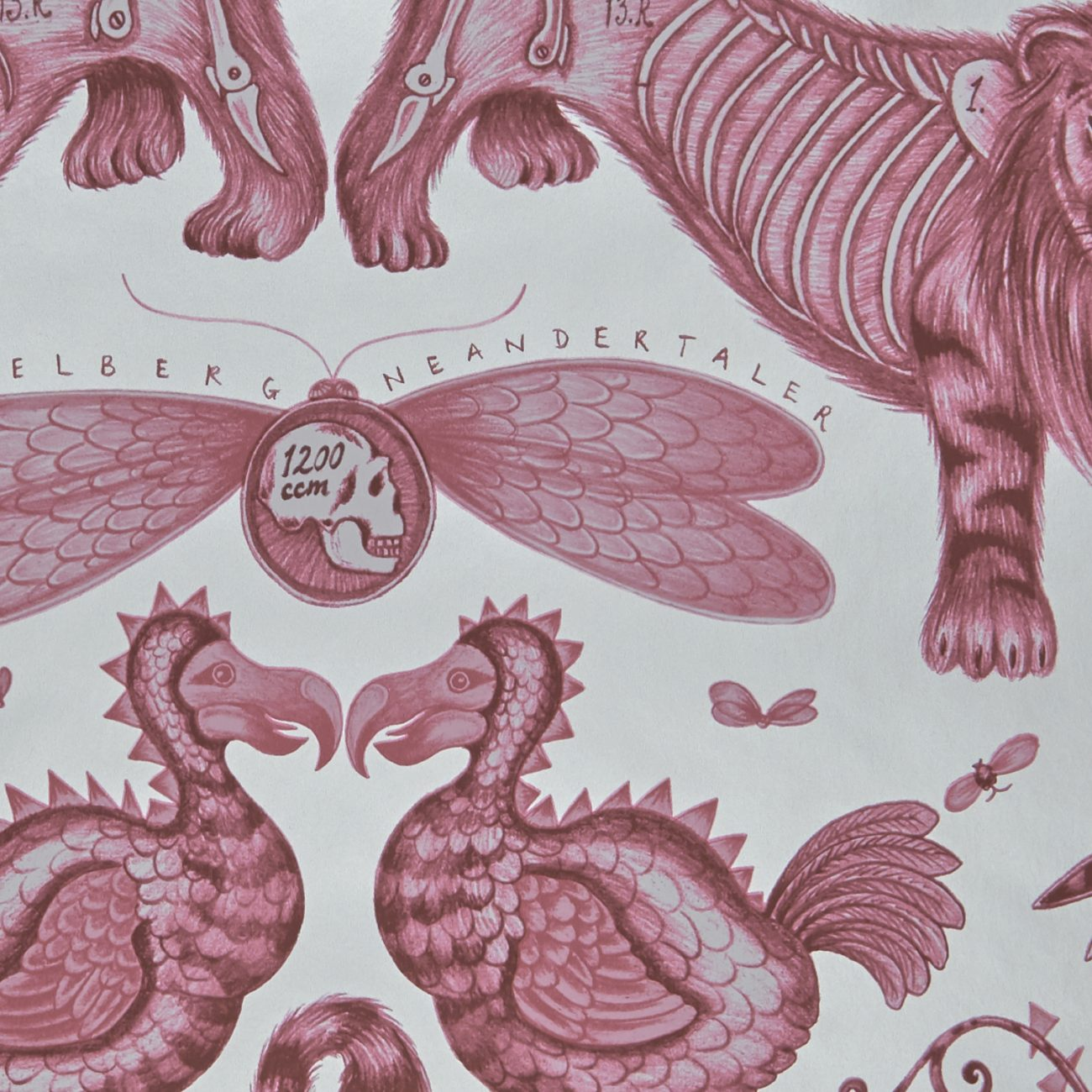Extinct wallpaper by Designer Emma J Shipley Animalia | Off White & Magenta
