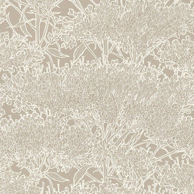 'Floral Blaze' Wallpaper in Taupe & Shimmering White - Your 4 Walls