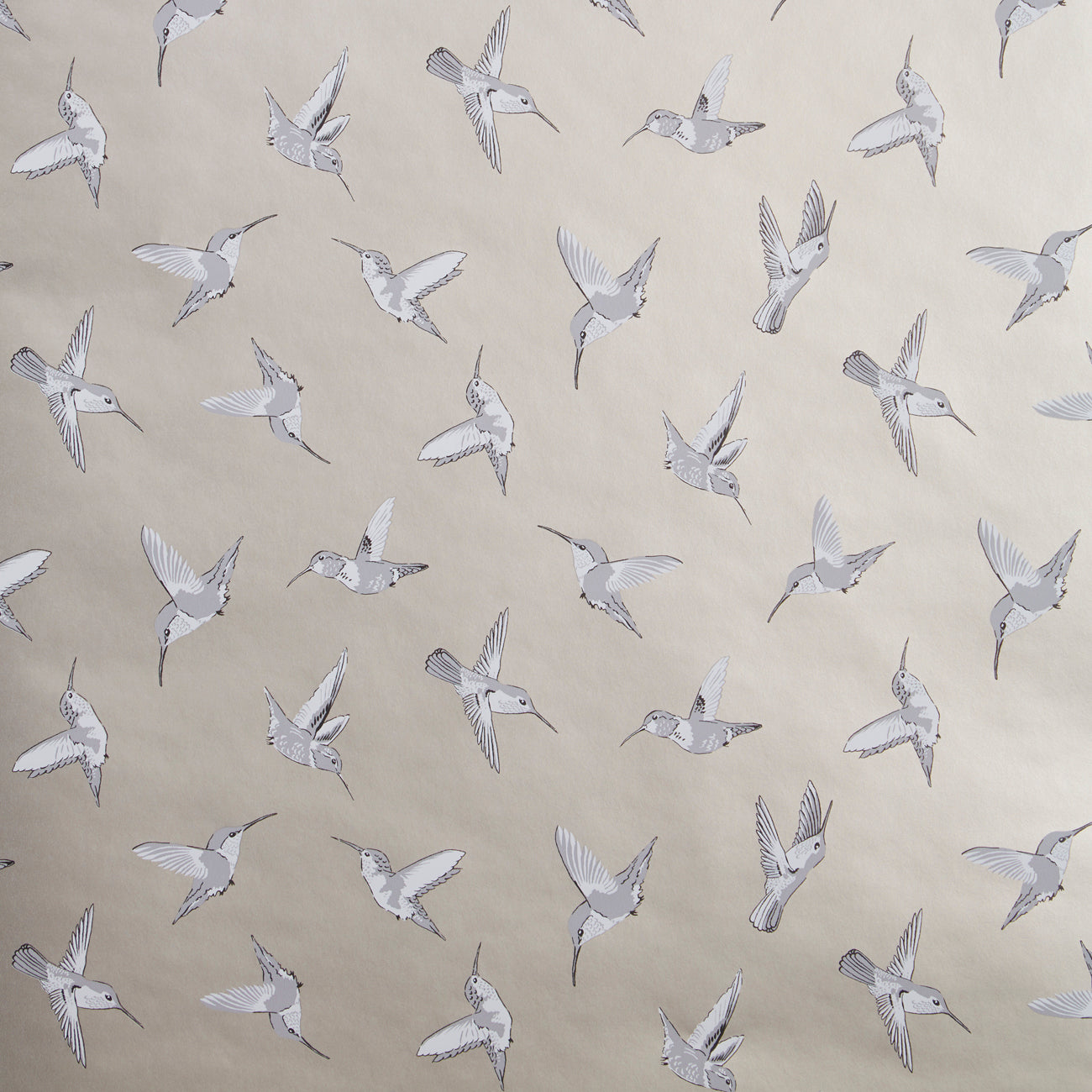 Hummingbird Oasis Designer Bird Wallpaper | Gold, Charcoal & White