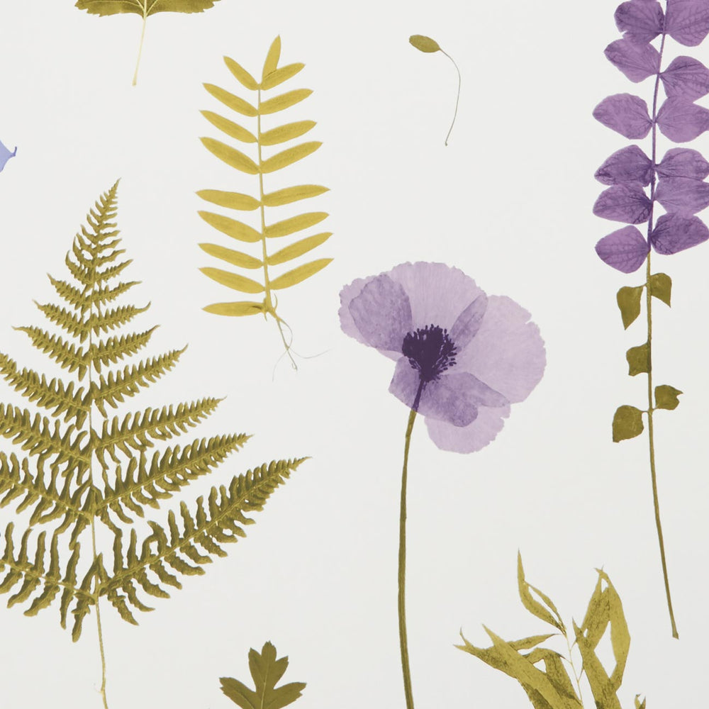Herbarium Pressed Flower Effect Floral Wallpaper | Heather / Purple and Green - Your 4 Walls