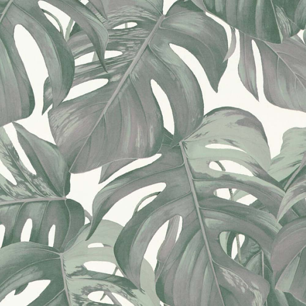 Monstera Leaf Design Wallpaper in Heather Green and off White - Your 4 Walls