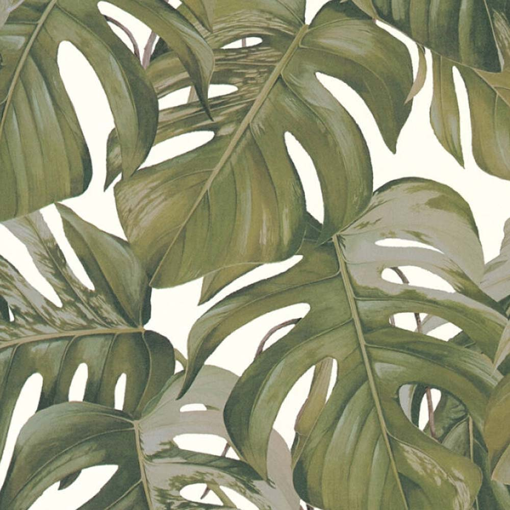 Monstera Leaf Design Wallpaper in Green - Your 4 Walls