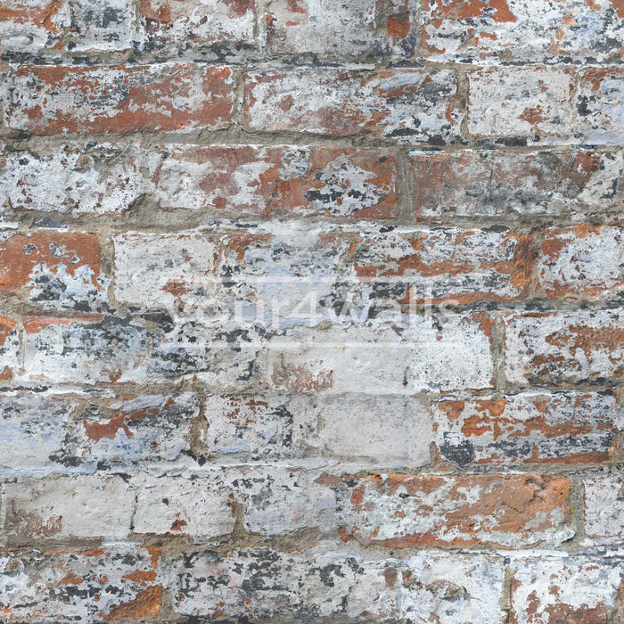 Marseille Reclaimed Brick & Plaster Effect Wallpaper| White & Red