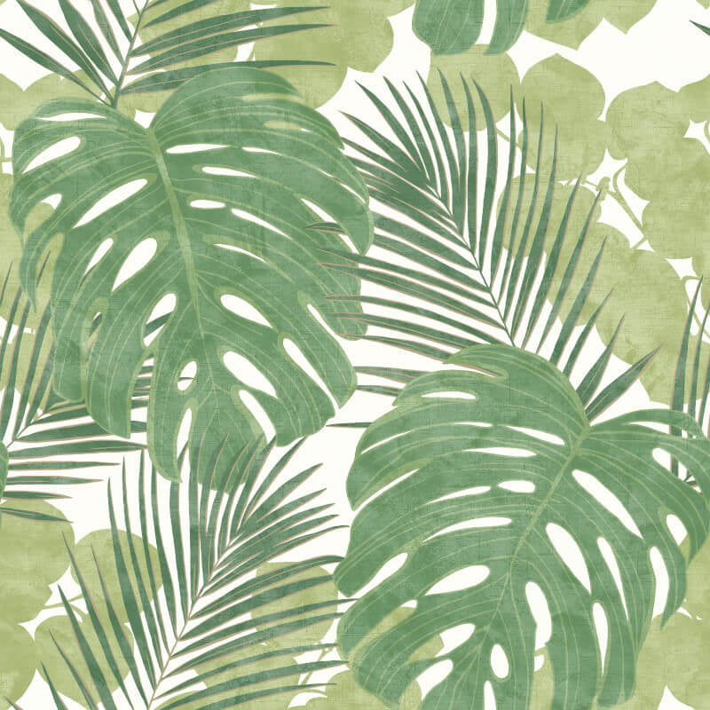 Large Print Palm and Monstera Leaf Wallpaper in Green and Gold Highlights - Your 4 Walls