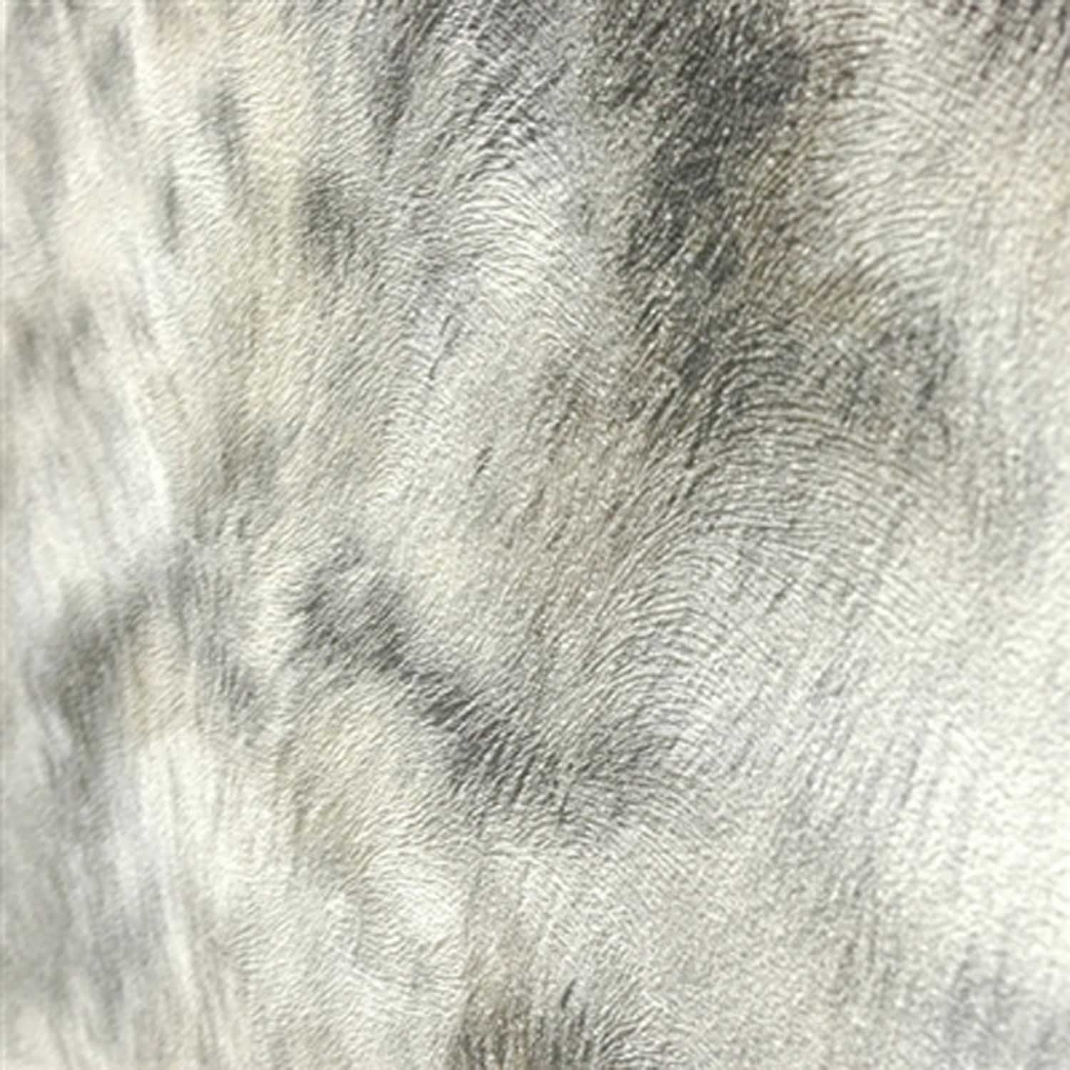 Fur Effect Wallpaper | Grey & White