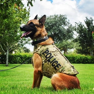 Survival Armor's K9 Vest Blue Line Innovations