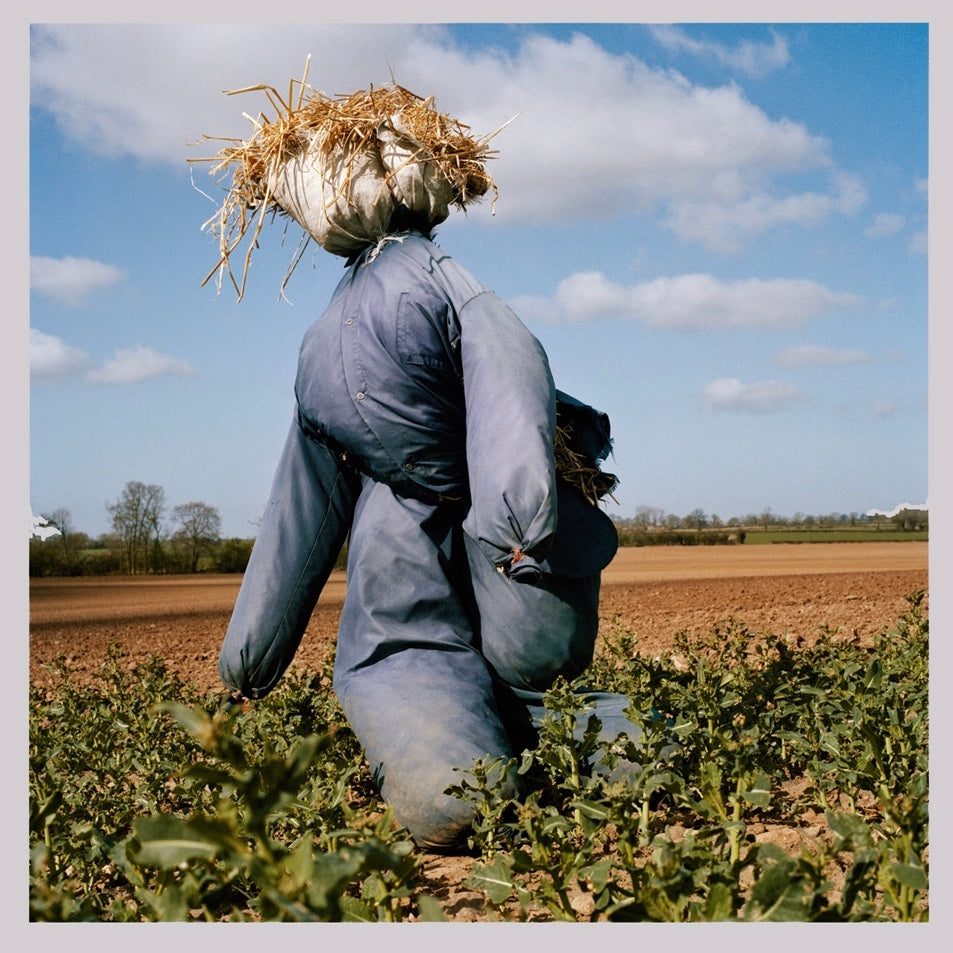 Scarecrows by Peter Mitchell - 9th October - 30th October 2015