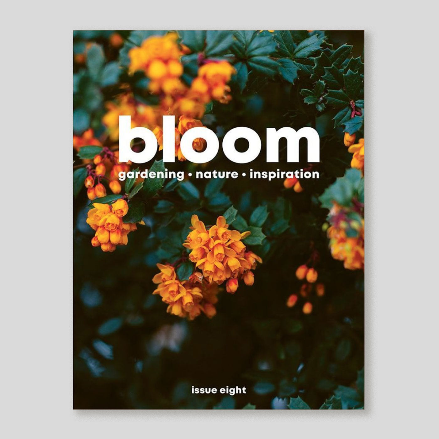 Bloom Magazine #8 | Colours May Vary