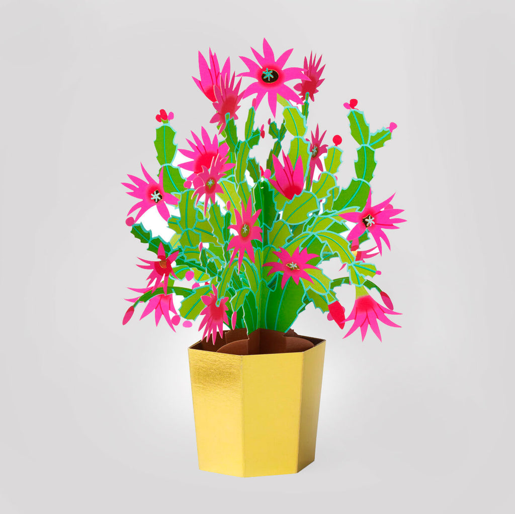 MoMA Pop-Up Holiday Card | Christmas Cactus