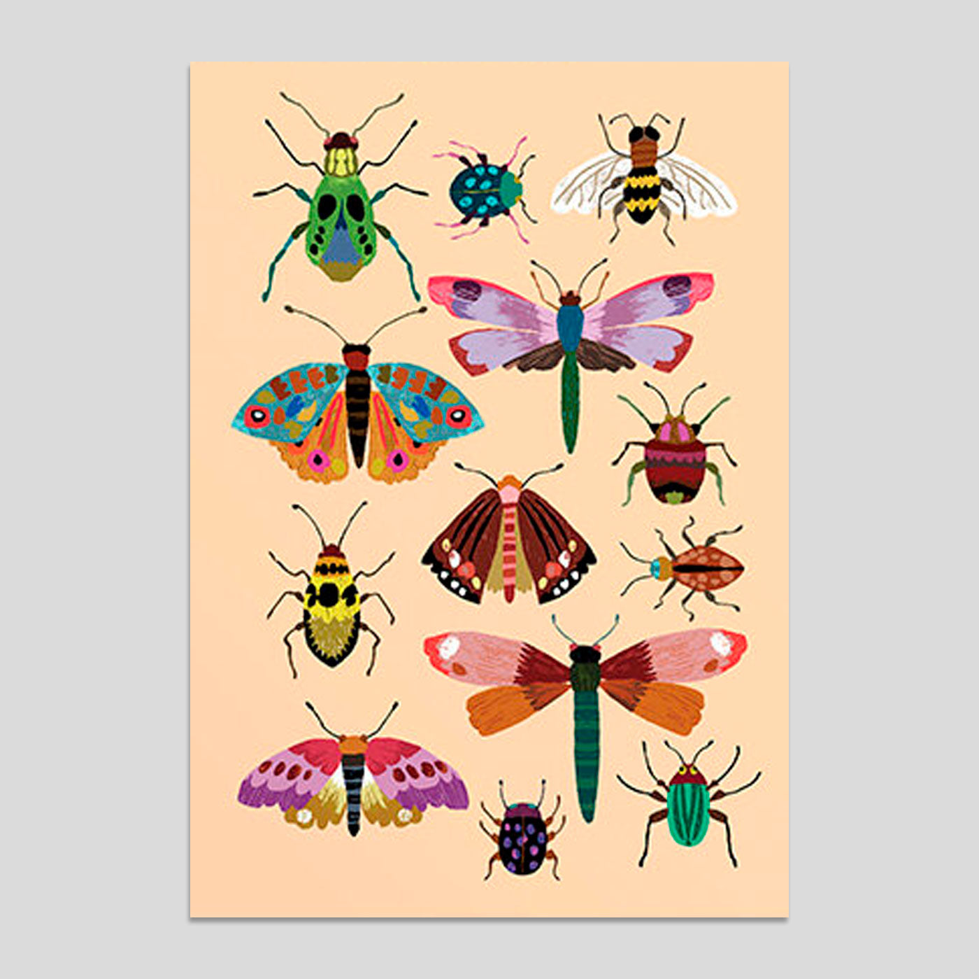 Brie Harrison - Insects Card